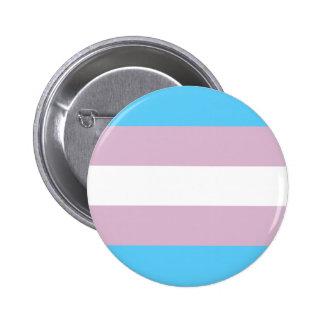 Trangender pride! pinback button