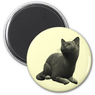 Tranquil Black Cat Magnet