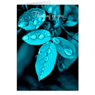 Tranquil Droplets Notecard