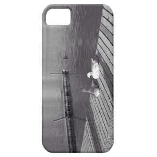 Tranquil ducks iPhone 5 cases