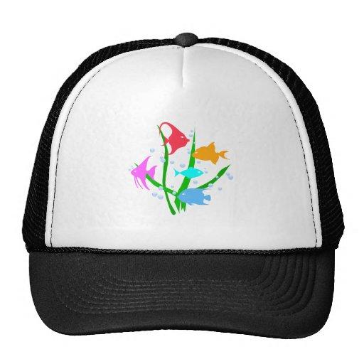Tranquil Fish Trucker Hat