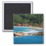 Tranquil Island Paradise Labadee Haiti 2 Inch Square Magnet