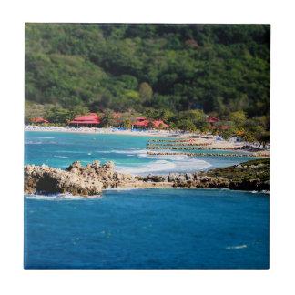 Tranquil Island Paradise Labadee Haiti Tile
