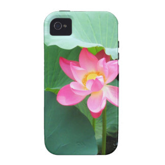 Tranquil Lotus iPhone 4 Cover