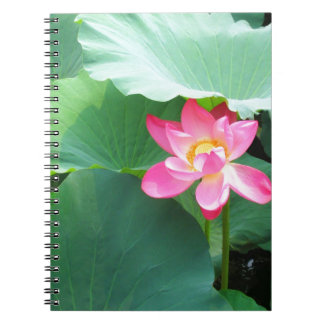 Tranquil Lotus Spiral Notebook