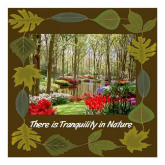 Tranquil Nature Canvas Print