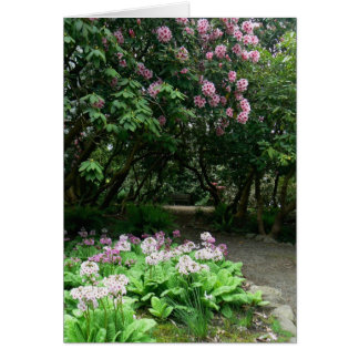 Tranquil Path Greeting Card