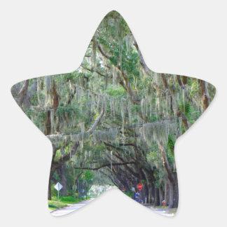 Tranquil Road Star Sticker