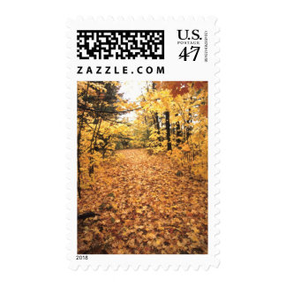 Tranquil Road with Fall Colors in New England Postage