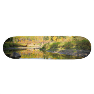 Tranquil Skateboard Deck