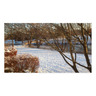 Tranquil Snow.jpg Double-Sided Standard Business Cards (Pack Of 100)