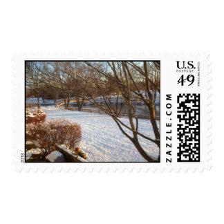 Tranquil Snow.jpg Postage Stamp
