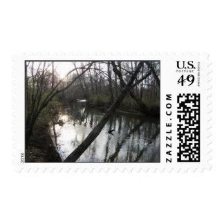 Tranquil Stream Postage Stamp