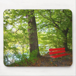 Tranquil trail mouse pad
