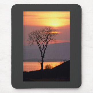 Tranquil Tree in Quebec Mousepad