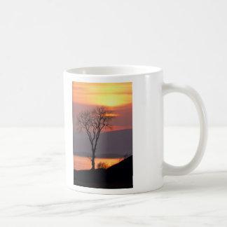 Tranquil Tree in Quebec Mug