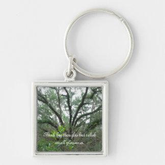 Tranquil Tree Key Chain