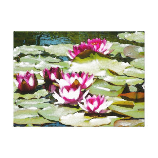 Tranquil Water Lillies Canvas Print