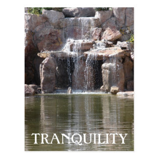 Tranquil Water Postcard
