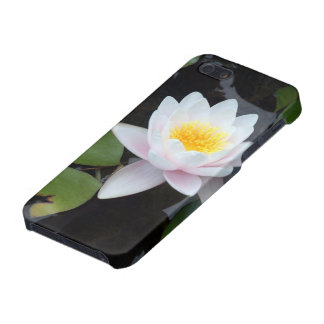 Tranquil waterlilly iPhone SE/5/5s cover