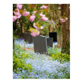 Tranquilidad salvaje, cementerio hermoso. Hopwas Tarjetas Postales