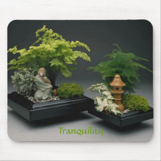 Tranquility by tdgallery mouse pad