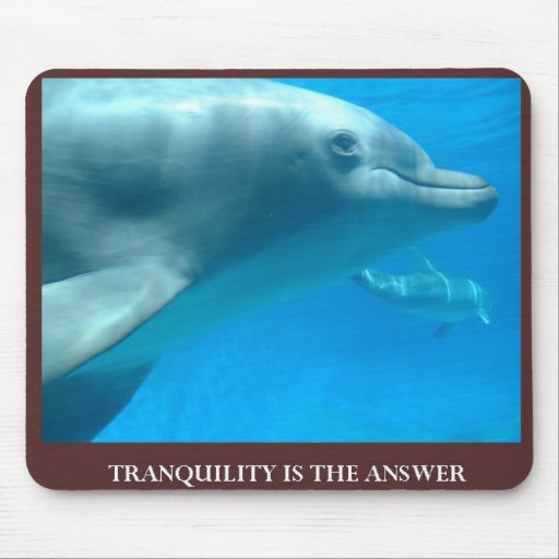 Tranquility is the answer mousepads