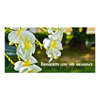 Tranquility Love and Abundance Custom Photo Card