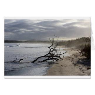 Tranquility paradise beach Galapagos Islands Card