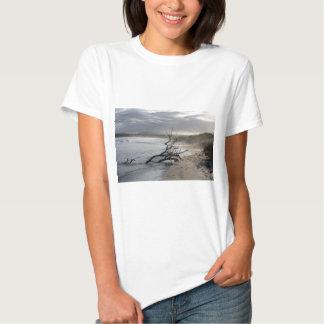 Tranquility paradise beach Galapagos Islands Tee Shirt
