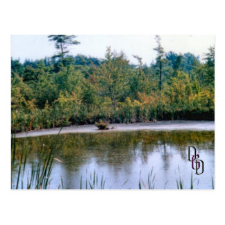 Tranquility Postcard