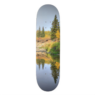 Tranquility Skateboard Deck