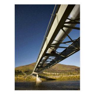 Trans Alaska oil pipeline crossing South fork Koyu Postcard