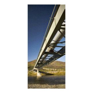 Trans Alaska oil pipeline crossing South fork Koyu Rack Card Design