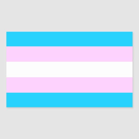 Trans pride flag stickers