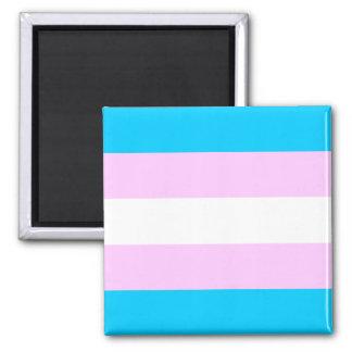 Trans Pride Magnet