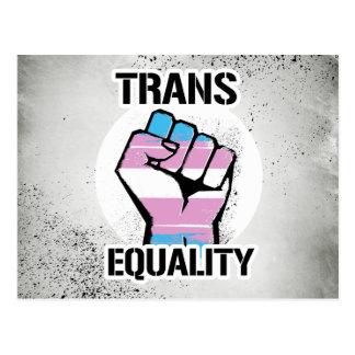Trans Resistance - Equality - -  Postcard