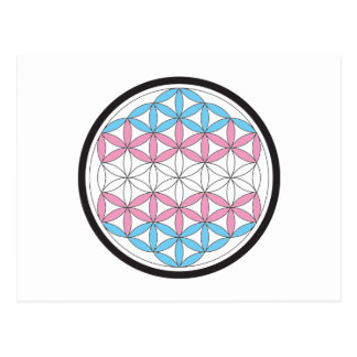 trans sacred geometry postcard