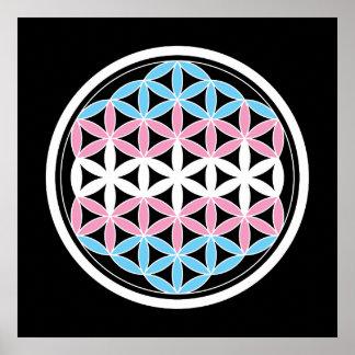 tranSacred geometry Poster