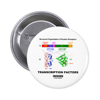 Transcription Factors Inside (Nuclear Receptors) Pinback Button