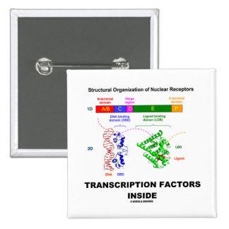 Transcription Factors Inside (Nuclear Receptors) Pin