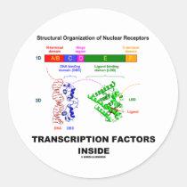 Transcription Factors Inside (Nuclear Receptors) Round Stickers