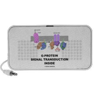 Transducción de la señal de la G-Proteína dentro Notebook Altavoz