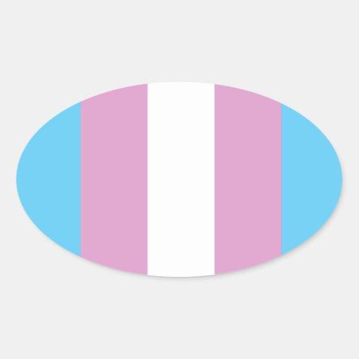 Transexual orgulloso pegatina ovalada