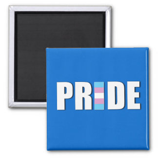 TRANSEXUAL PRIDE WORD FLAG MAGNET