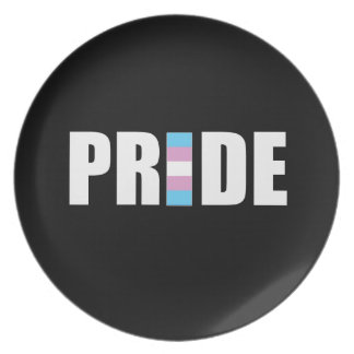 TRANSEXUAL PRIDE WORD FLAG PARTY PLATES