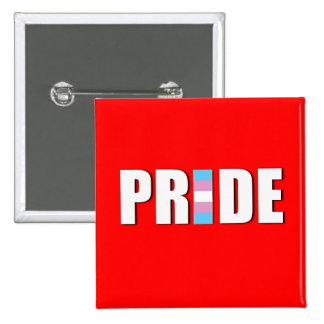 TRANSEXUAL PRIDE WORD FLAG PIN