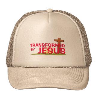 Transformado por JESÚS Gorro