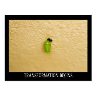 Transformation Begins Monarch Butterfly Postcard