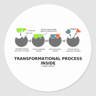 Transformational Process Inside (Enzyme Substrate) Classic Round Sticker